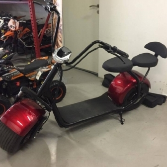 Big Wheel Citycoco  9.5inch (harley electric scooter)