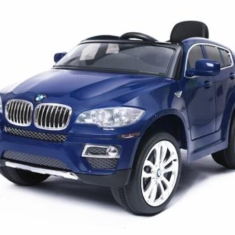 BMW x6 2x 35W