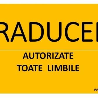 RCA- TRADUCERI -Inmatriculari auto complete
