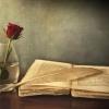 0771 076 166 Vand cartea ciresica jalobeanu si ioan rasa –  mathcad – probleme d