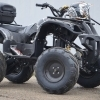 250cc Grizzly  10 Offroad