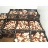 Ambalare ciuperci 1400 euro, in Germania