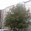 Apartament 2 camere, 35.25 mp, Rosiori de Vede, Teleorman