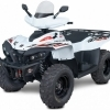 ATV Access 650cc Long EFI 4WD