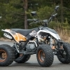 ATV EGL Maddex 50cc Inmatriculabil
