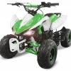 ATV Nitro 125cc Speedy RG7