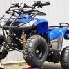 ATV Nou Bmw 125cmc 2x4 Garantie 12Luni Cadou Casca