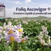 Biostimulator de crestere cu extract de alge – Foliq Ascovigor