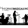 Catalog online de formatii muzicale