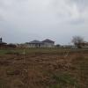 Comuna berceni terenuri in rate
