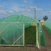 Construim solare legume