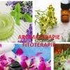 Curs Aromaterapie, Fitoterapie