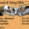 Curs masaj / Reflexoterapie