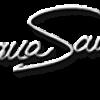 Dana Savuica video blog - web site oficial