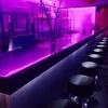 Dansatoare/Hostesse Club de noapte  Belgia
