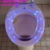 Desfundarea unui wc