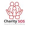 Donatii pentru copiii orfani