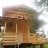 Executam case din lemn de brad C 054 Arefu