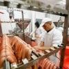Fabrica de mezeluri Germania