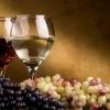 Fabrica de vin germania