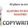 Firma de SEO, Promovare, Programare angajeaza Copy/Content-Writer
