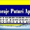 Firma Foraje Puturi, Denisipari, Piloni