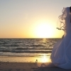 Fotograf de nunta, videograf nunta, filmari cu drona