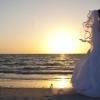 Fotografie de nunta in pachet complet