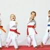 Lectii de arte martiale/karate