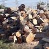 Lemne de fag stejar sau carpen si carbune lignit