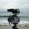 Microfon / Lavaliera DSLR / Videocamere: Aputure; Boya; Takstar; Saramonic; Sony