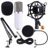 Microfon Studio BM700 kit, pop filtru, stand brat articulat, 260 lei !