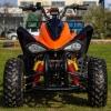 ! OFERTE SPECIALE DE PASTE ! Atv Nitro Motors Akp Carbon Speedy 150cmc Cutie CVT