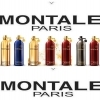 Parfumuri de Nisa Montale Paris