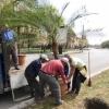 Muncitori la drumuri si spatii verzi 1450 euro