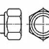 Piulita infundata cu insertie non-metalica  (Hexagon nut domed cap nut with non-