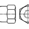 Piulita infundata inalta  (Hexagon domed cap nut)