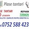 Plase tantari / Reparatii termopane
