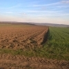 Proprietar vand teren agricol