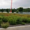Proprietar teren la lac zona Petricani Toboc