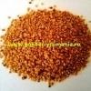 Seminte si plante Goji NQ1