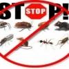 Servicii de dezinsectie, dezinfectie ,deratizare