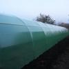 Solar legume si flori 22 m lungime /4 m deschidere/ 2,6 m inaltime