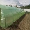 Solar legume si flori 26 m lungime /4 m deschidere/ 2,6 m inaltime