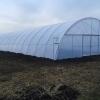 Solarii pt legume si flori model Ungaria ieftine