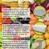 Standuri pvc pentru piete agroalimentare