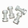 Șuruburi de înaltă rezistență (Hexagon bolts for high strength)
