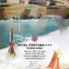 Sustineti Hotel Fortuna la Romanian Top Hotel Awards!