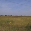 Teren 499999.45 mp (2 loturi), Ciorogarla, Ilfov.