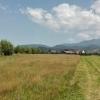 Teren 5.000 mp, Rasnov, Brasov